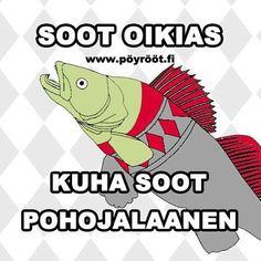 www.pöyrööt.fi | #MoonOikias