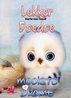 Good Night Greetings, Good Night Messages, Good Night Wishes, Good Night Sweet Dreams, Good Night Quotes, Day Wishes, Morning Quotes, Baie Dankie, Lekker Dag