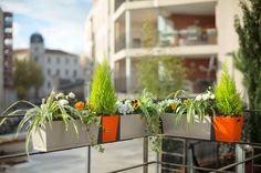 Jardinière clipsable pour balcon signée Grosfillex