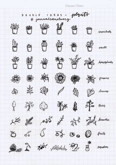 Drawing Doodles Ideas Doodle ideas 1 - plants Remember when I asked you what should I do with the remaining pages of my bujo? Well, the most suggested thing was to do some doodle ideas, which I did, yaay :D. Doodle Bullet Journal, My Journal, Bullet Journal Inspiration, Journal Pages, Bullet Journal Markers, Bullet Journal Ideas Handwriting, Bullet Journal Notebook, Doodle Inspiration, Tattoo Inspiration