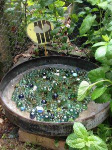bee watering dish