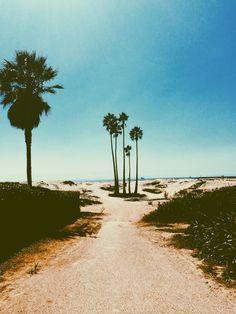 California Beaches; The Best State Ever; | #SHOPTobi | Check Out TOBI.com for the latest fashion | #KillaCali