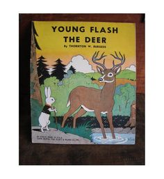 1940's children's books | 1940 Flash the Young Deer children's book in excellent condition