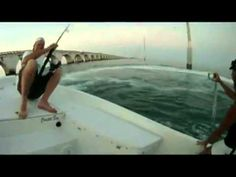Best Shark Attack Video Ever...another tarpon fatality