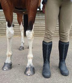 Muc Boots Pacy II Re