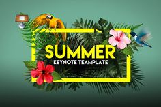 Summer | Keynote Template by Zacomic Studios on @creativemarket