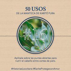 Uso del Karité #16 Nutre tus puntas! #karite #karitepretegeconamor #historiasloccitane #loccitane #tips