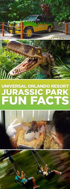 Visiting Universal Orlando Resort? Check out this list of fun facts you may not know about Jurassic Park at Universal's Islands of Adventure.