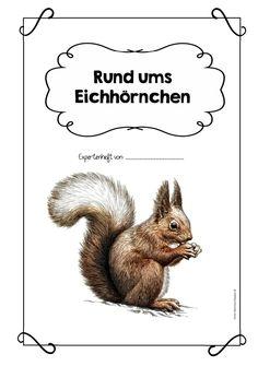 """Expertenheft zur Kartei """"Rund ums Eichhörnchen"""" Die letzte Woche habe ich genutzt und das versprochene Expertenheft zur Kartei """"Rund ums ..."""