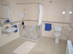 Building the perfect handicapped shower aids for daily for Handicap kitchen aids