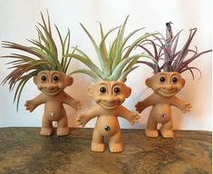 A+Plantroll+Is+A+Troll+Doll+With+An+Air+Plant+For+Hair
