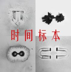 SPECIMENS OF TIME -時間の標本- LING MENG DIESEL ART GALLERY