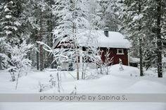 MARGHERITE, FARFALLE E SOGNI Sabina's lifestyle: Lapponia finlandese: la terra delle fiabe