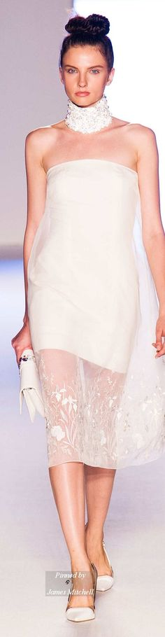 AIGNER Collection Spring 2015 Ready-to-Wear