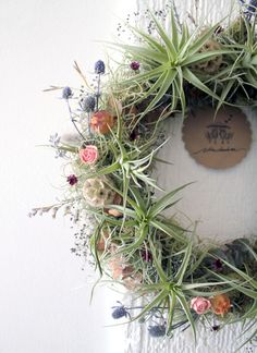 Air Plant Wreath + DIY + Tropical Living Plant...Southern Wreath...live air plants, live spanish moss, hand-dried summer flowers, and other subtle sparkling foliage details.  Great for weddings too!