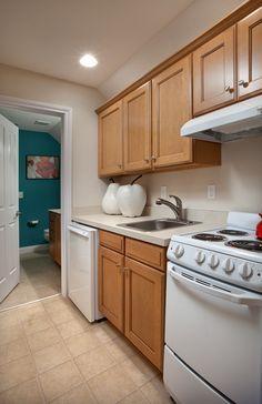 Palazzo Bonus Suite Optional Kitchenette
