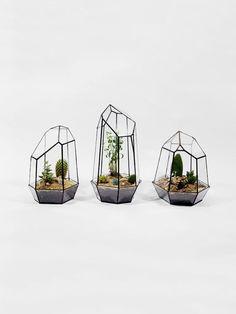 Vasos 'Quartz Terrarium'