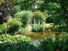 Goldhoorn Gardens