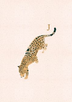 © Elies Thijs 2020 Illustrated Animal Alphabet, in English and Dutch: Jaguar Animal Print Wallpaper, Cute Patterns Wallpaper, Alphabet Art, Animal Alphabet, Jungle Illustration, Graphic Illustration, Cute Wallpaper Backgrounds, Cute Wallpapers, Cheetah Drawing