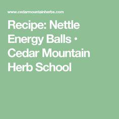 Recipe: Nettle Energy Balls • Cedar Mountain Herb School
