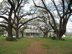 Oakland Plantation at Cane River Creole National Historic Park