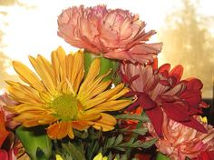 http://fineartamerica.com/featured/autumn-flowers-in-the-morning-elisabeth-ann.html?newartwork=true for more prices and sizes please click on the link
