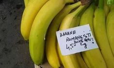 Funny Pictures, Funny Pics, Banana, Lol, Fruit, Memes, Romania, Random, Fanny Pics