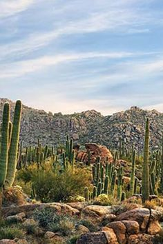 Arizona (yeah, but so is New Mexico and waaaay prettier IMO) /// These Countries Have the Best Weather in the Whole Entire World via @PureWow