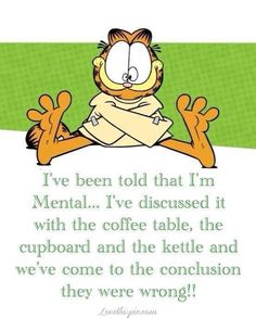 Ive been told Im mental funny quotes quote crazy garfield lol funny quote funny quotes humor