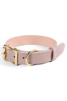 As a pet parent, you'll discover yourself wanting to ruin your pet dog and provide things which aren't necessarily in the standard requirements category. Puppy Gifts, Dog Gifts, Dog Collar Tags, Dog Varieties, Personalized Dog Collars, Leather Roll, Dog Wear, Dog Costumes, Leather Dog Collars