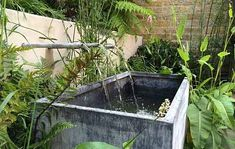 Exotic Retreats gardens have Bespoke water feature, Raised patio and Evergreen planting. Living Colour Gardens helps you by creating Exotic gardens Metal Trough, Water Trough, Water Spout, Water Features In The Garden, Garden Features, Small Garden With Fountain, Pond Design, Garden Design, Metal Water Tank