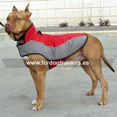 #Abrigo para #perros #pitbull de #nylon #impermeable ideal para paseos en temporadas frías y lluviosas. Disponible en tallas para #cachorro y #perro aduto. Haga clic para ver más detalles https://www.fordogtrainers.es/index.php/arneses/sudadera-perro-reflectante-de-nylon-capa-chubasquero-detail