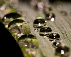 Raindrop Dontopia