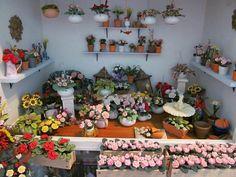 Create your own Garden in Miniature Garden