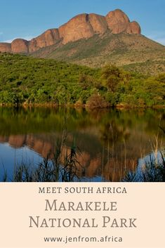 Marakele National Park - A Place of Sanctuary. - Jen From Africa North West Province, Smell Of Rain, On A Clear Day, Big 5, Tent Camping, Tents, The Locals, South Africa, Catering