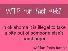 Dumb idaho laws