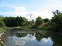 Tyne Anglers Alliance Waters - Throckley.  From thetaa.co.uk.  The Reef - JE