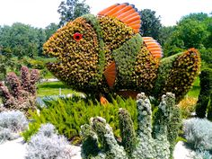 Mosaiculture Montreal