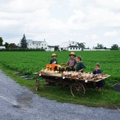 Amish Children | www.lydiaglick.com | #write31days #31AmishDays
