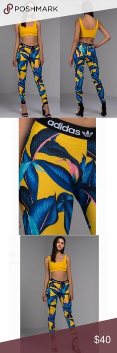 38a97abe5b3b8 Adidas Originals x Farm Palm Tights DH3056 Stand out from the crowd. The Farm  Leggings