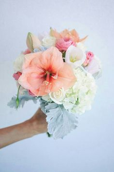 {A LOVELY Wedding Bouquet Made Up Of: Peach/Pastel Coral Amaryllis, Pink Ranunculus, White Tulips, White Roses, Light Pastel Green Hydrangea, & Broad Leaf Dusty Miller···················}
