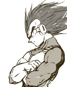 DBZ Vegeta::: I'm sorry... I just love him. I don't care how fucked up he was/is/will always be.