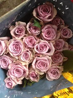 Lilac Rose called 'Armando' Sold in bunches of 20 stems from the Flowermonger the wholesale floral home delivery service.
