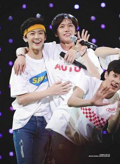 Nct U Members, Nct Dream Members, Nct 127, Nct Dream Jaemin, Ten Chittaphon, Sm Rookies, Na Jaemin, Jung Woo, Ji Sung