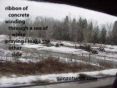 #gonzoturtle #montana #poetry #poem gonzoturtle.com