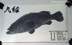デジタル魚拓サービス 魚墨で作成した九絵(クエ)の墨魚拓です。 It is a sumi fish print of a longtooth grouper. www.uosumi.net/