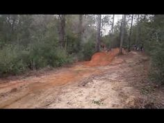 Squatch Trail. The Squatch Trail in Pensacola, FL. UTB #2 Freeride Mtb, Pensacola Fl, Trail, Plants, Painting, Painting Art, Paintings, Plant, Painted Canvas