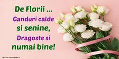 Felicitari de Florii - De Florii ... Ganduri calde si senine, Dragoste si numai bine! 8 Martie, Herbs, Birthday, Plants, God, Design, Pictures, Easter Activities, Dios