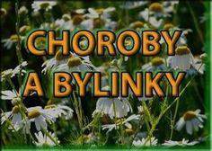Vyberte si neduh a hledejte bylinky Healing Herbs, Medicinal Herbs, Look Body, Dieta Detox, Edible Flowers, Herbal Tea, Natural Medicine, Natural Cures, Kraut