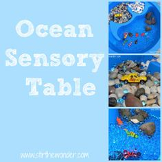 Awesome Ocean Sensory activity.  Great mix of materials!